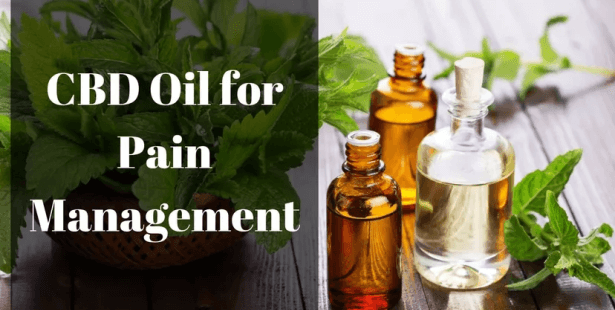 Top Hemp Oil Products For Chronic Pain Relief