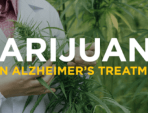 For Alzheimer's Patients -Marijuana Can Help Manage Symptoms