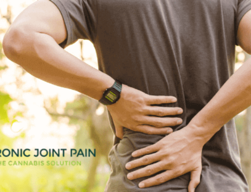 How To Use CBD For Back Pain?