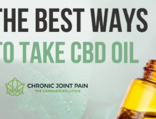 6 Basic Facts About CBD Every Beginner Must Know