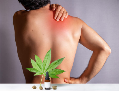 If You Haven't Tried CBD for Back Pain, Now Is the Time.