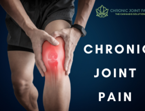 CBD vs Opioids: Which is Better for Chronic Joint Pain?